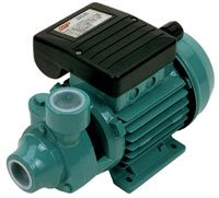 Cast Iron Peripheral Pumps