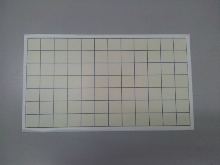 Fly Sticky Pad Type 1