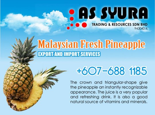 AS SYURA TRADING & RESOURCES SDN BHD