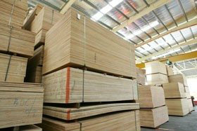 Plywood Wholesaler