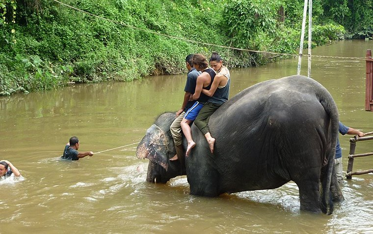 Lanchang Elephant Sanctuary