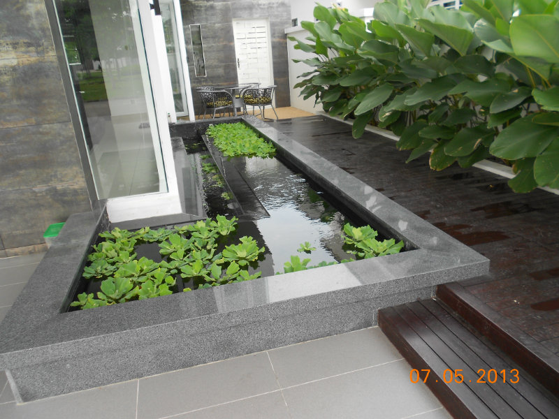 Ispcp omega error 404 for Koi pond design malaysia