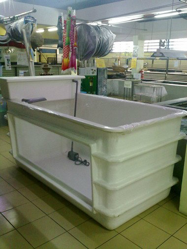 Fiber Tank 3 X 6 X 3 High Koi Pond Accessories Johor