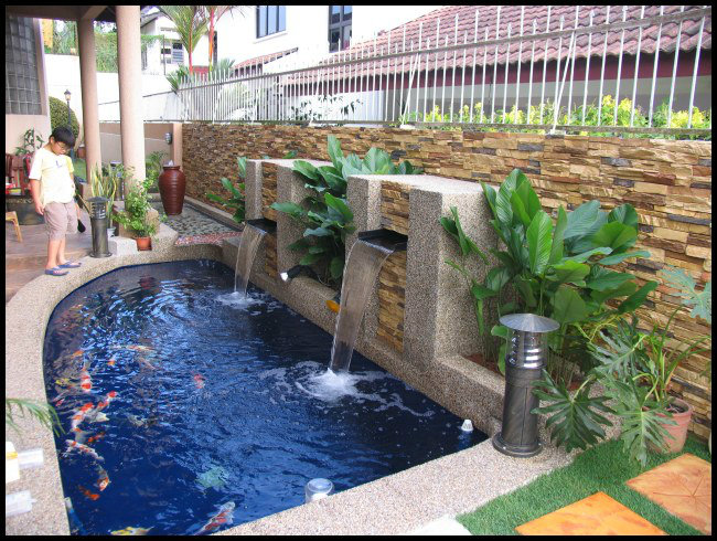 Water fountains planter boxes koi pond design and build for Koi pond filter design