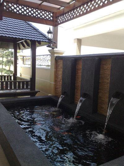 Waterfall x 3 koi pond design and build johor bahru jb for Koi pond johor bahru