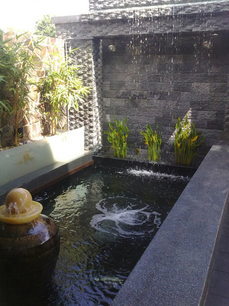 Impian emas ting koi pond design and build johor bahru for Koi pond johor bahru