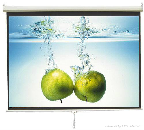 Manual Wall Projection Screen