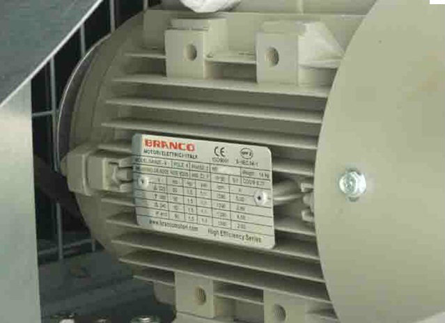 Branco Three Phase AC Induction Motor  Class F Insulation, I