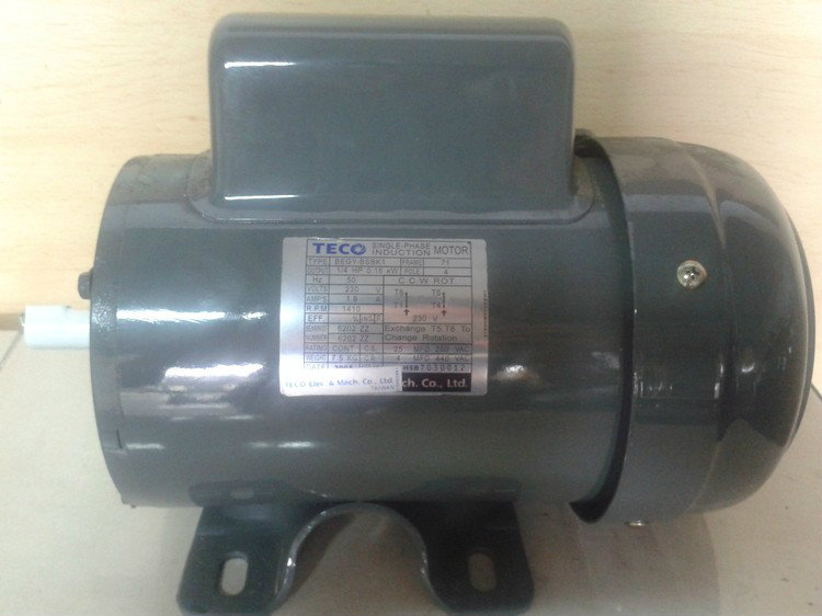 Offer Price for New Teco 0.18KW 1/4HP 4Poles Single Phase In