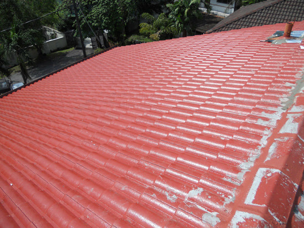 Supply and change Roof Tiles