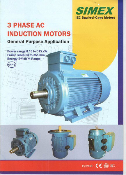Simex Three Phase AC Induction Motor