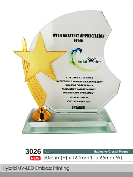 CT-3026 Crystal Plaque / Awards