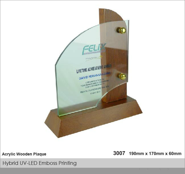 CT-3007 Crystal Plaque / Awards
