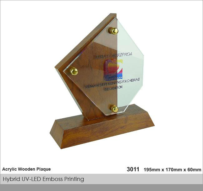 CT-3011 Crystal Plaque / Awards