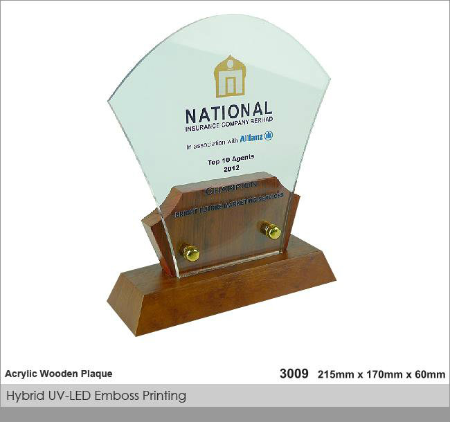 CT-3009 Crystal Plaque / Awards