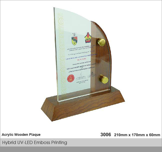 CT-3006 Crystal Plaque / Awards