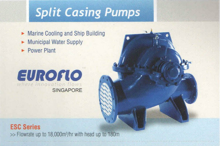 Euroflo Split Casing Pump