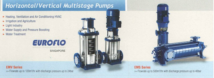 Euroflo Horizontal / Vertical Multistage Pump