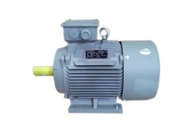 Simotics China Standard Motor ( 1LE0 ) IE1, IE2