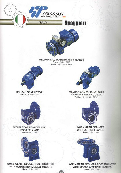 Spaggiari Mechanical Variotor, Helical Gear, Worm Gear