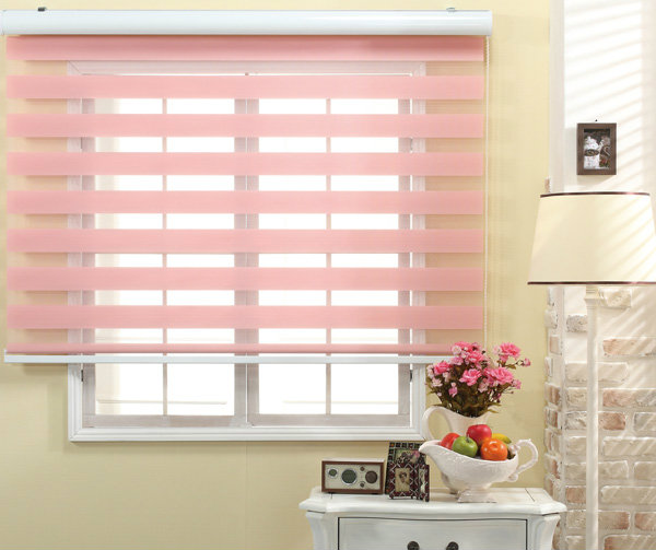 Zibra Blinds