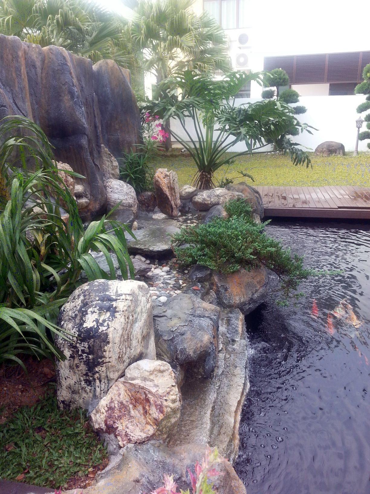 Upgraded waterfall horizon hills bungalow koi pond for Koi pond johor bahru