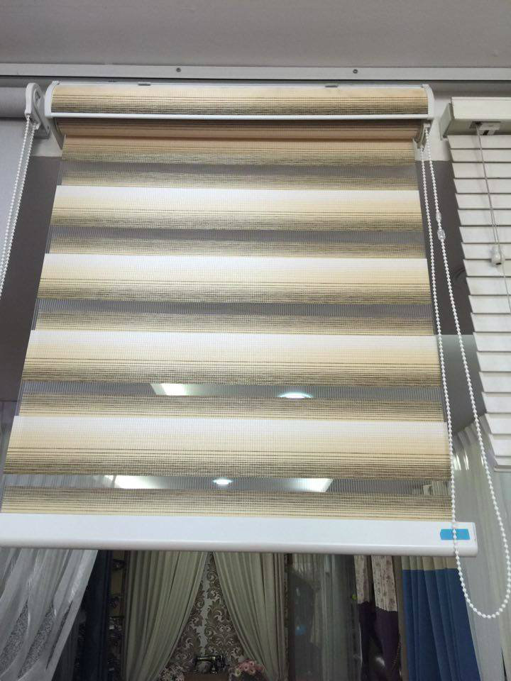 two tone korean blind