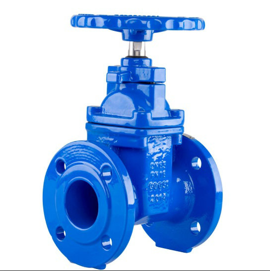 Cast Iron Single Door Wafer Check Valve