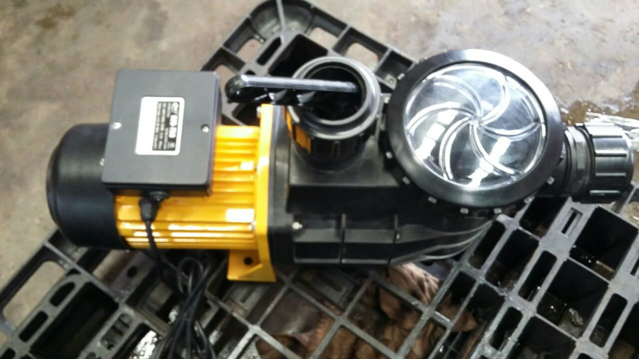 HZS-750  1hp Single Phase Pump