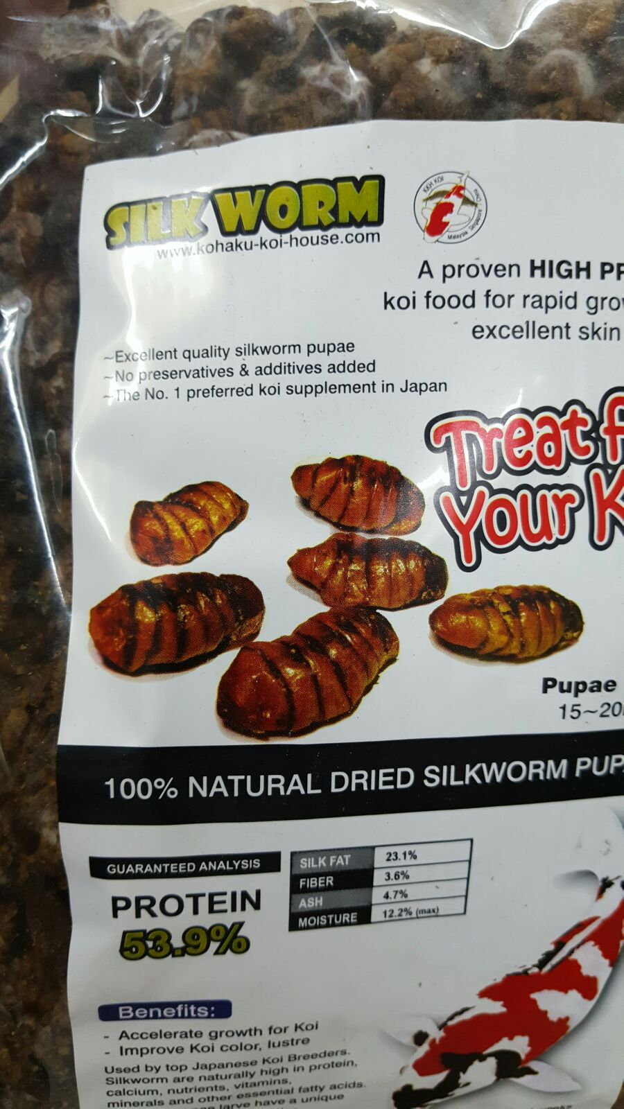 Natural high protein food for koi