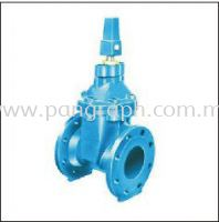 Resilient Seated Gate Valve Flanged Ends