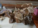 Mushroom.Wood Carved.Home Deco.Hiasan.Johor.Fengshui.Decoration.Water Pond