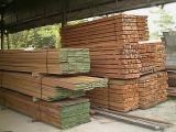 Bundle up Kapur wood