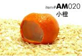 AM020  Orange House