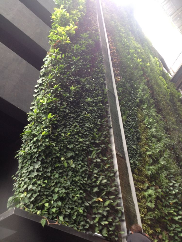 Green Wall Stainless Steel Weir