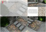 fish pond contractor . Design fish pond . Design water feature