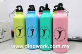 Aluminium Sport Bottle