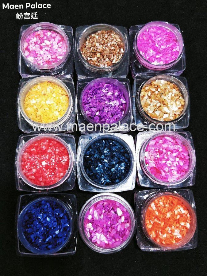 SHELL POWDER 1 SET 12 COLOUR