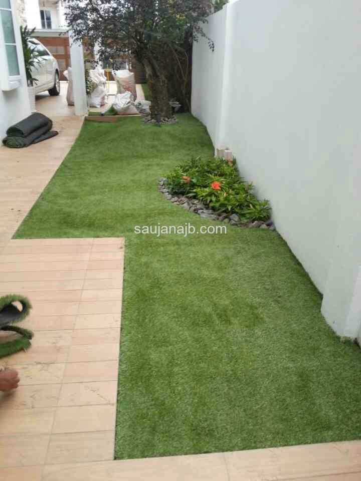 Carpet Grass @ Residential