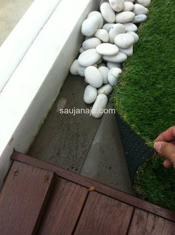 Carpet Grass Application