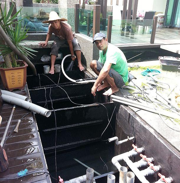 Koi hotel service pond filter improve filter system for Koi pond filtration design