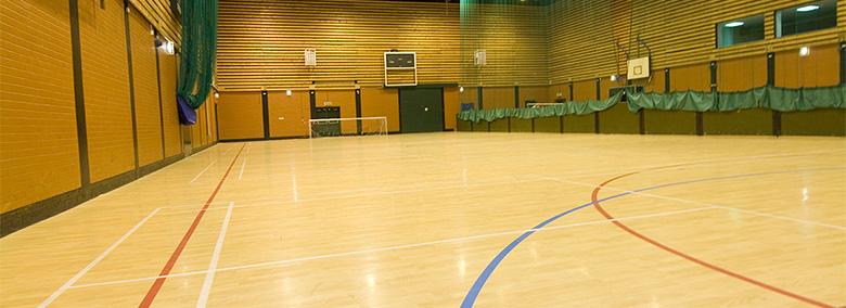 Timber flooring system sprung sport flooring malaysia for Sport court floor