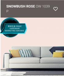 OW1039P SNOWBUSH ROSE
