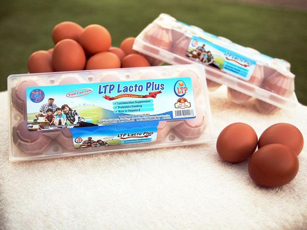 LTP Lacto Plus
