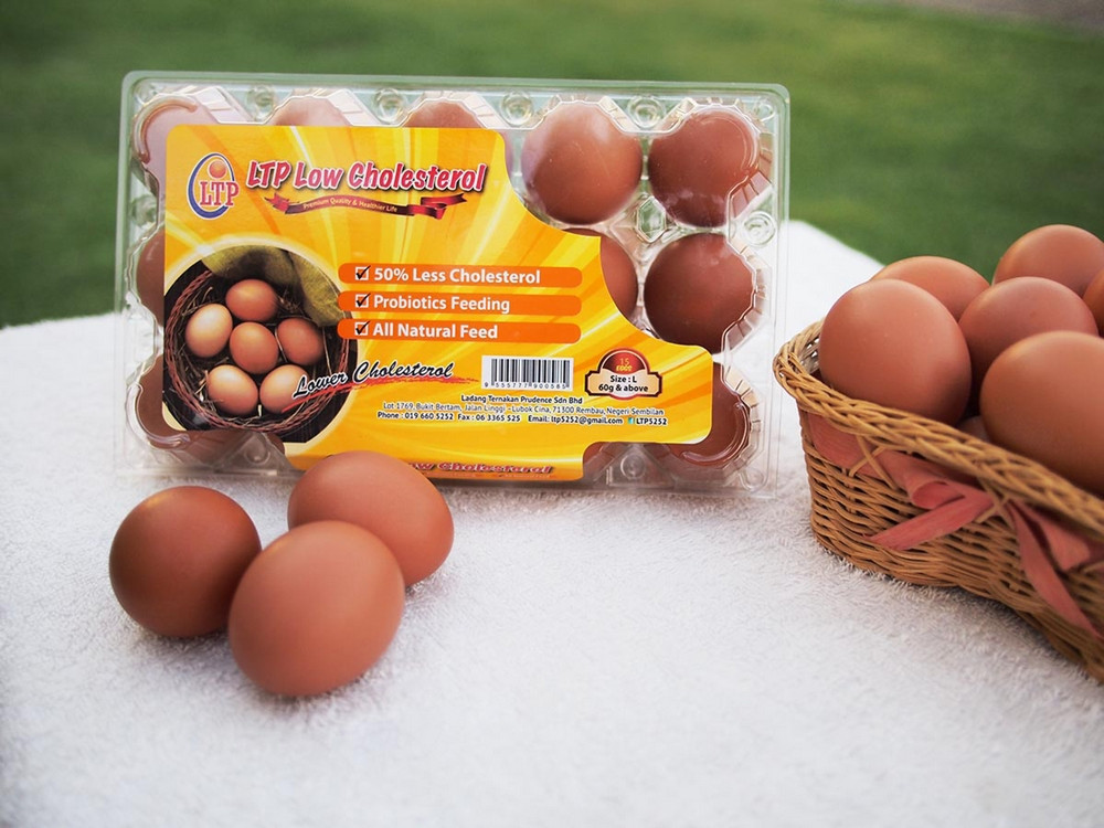 LTP Low Cholesterol