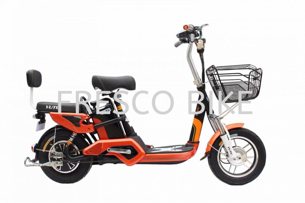 ELECTRIC BICYCLE EDIFIER 5
