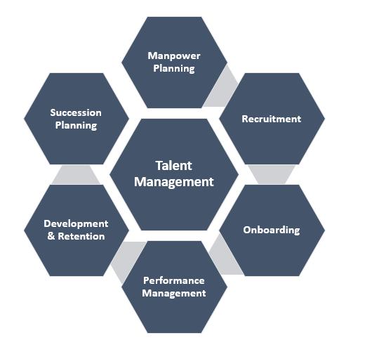 Talent Management System / Software