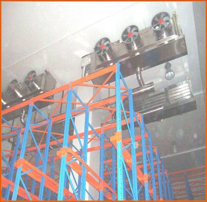 2000Ton cool storage room